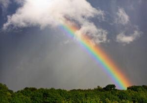طیف نور در رنگین کمان
